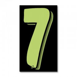 "Windshield Numbers 7.5"" (Black/Green)"